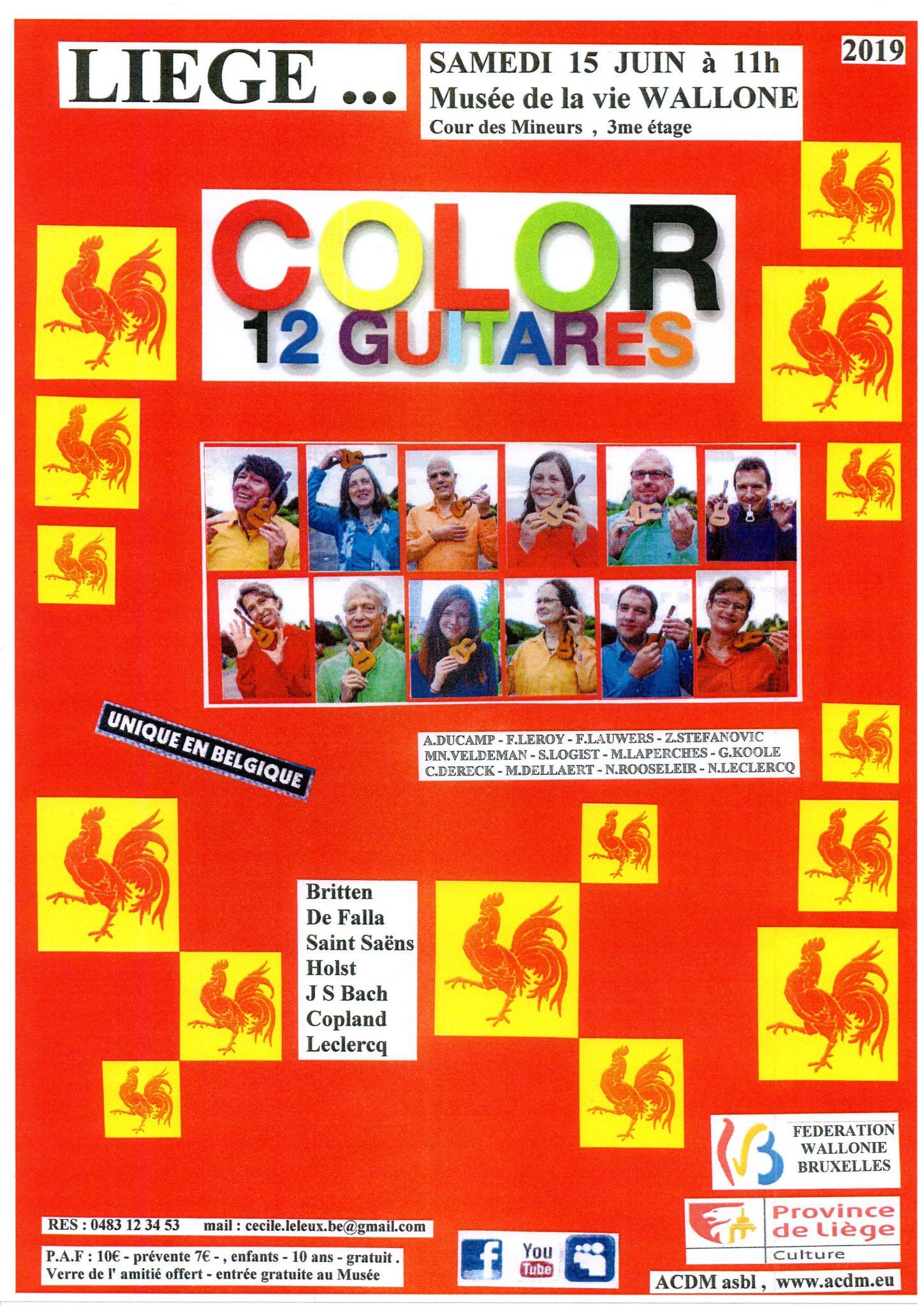 color 12 guitares @ musee de la vie wallone | Liège | Wallonie | België